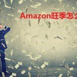 亚马逊年销售超百万大卖数据分析,更好准备Amazon旺季销售计划